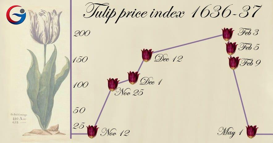 Bong bóng hoa Tulip là gì? So sánh hội chứng hoa Tulip với Bitcoin